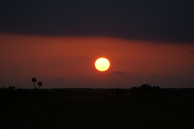 Sunset, Big Cypress NP