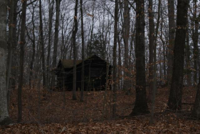 Old CCC camp at Prince William National Forest Park - A little creepy, sitting beyond the road a distance.