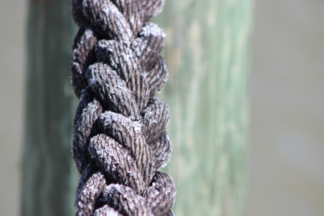 Rope on our dock