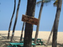Not a great picture, cute sign we found on one of the beaches in HI
